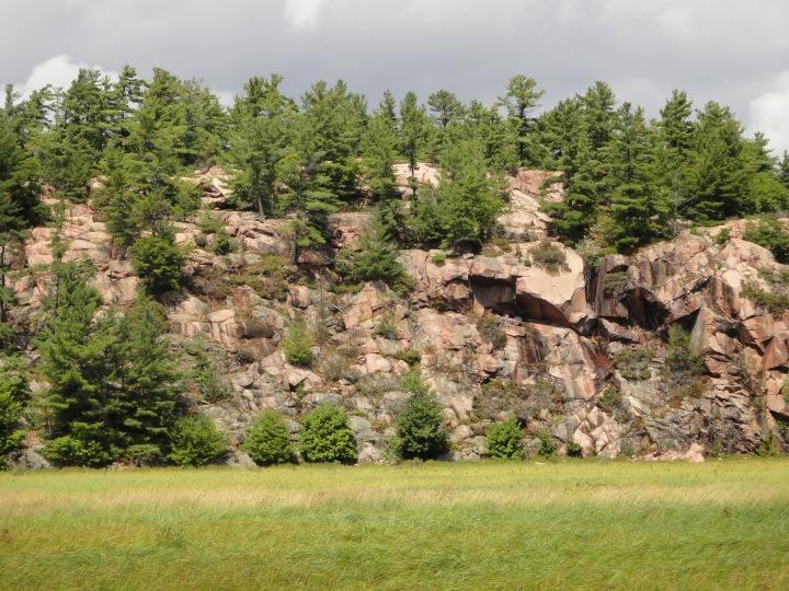 Cranberry Bog Trail, Killarney Provincial Park